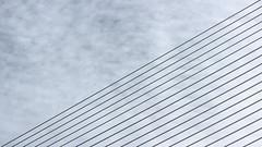 Cel ratllat (lluiscn) Tags: bridge sky rayas valencia puente cel diagonal cables cielo calatrava pont valncia rayado jamonero linias ratlles lnies
