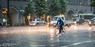Plou - Rain - Llueve
