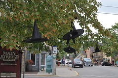 Spoooooky (Studio 9265) Tags: county usa brown holiday black tree halloween hat leaves festive nashville witch floating indiana september spooky in 2015