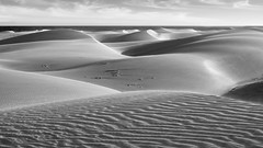 big waves (gerhard.haindl) Tags: blackandwhite bw dunes landscape landschaft mono monochrome noiretblanc nopeople outdoor photography sw schwarzweiss