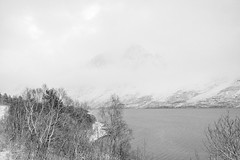 There was a time when there was nothing at all (OR_U) Tags: 2016 oru norway ramfjord svensby fjord water mountains snow sea season trees highkey white blackandwhite blackwhite schwarzweiss howardjones monochrome