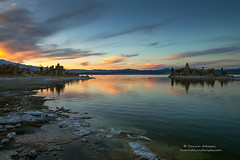 Last Moments of Sunset - Mono Lake s (Darvin Atkeson) Tags: mono lake sunset autumn fall color eastern sierra nevada mountains desert aspen gold golden california grove stand trees trunk bark white county darv darvin lynneal atkeson yosemitelandscapescom