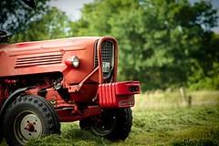 Gldner (Flos Fotos) Tags: vintage classical oldtimer tractor schlepper trecker tracteur trekker trator trattore traktor tractorandmore
