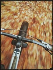 rustle (Hagbard_) Tags: bike mtb fatbike herbst autumn mountainbike tour outside outdoor unterwegs biking cycling velo ride exploring nature landscape fun life