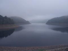Nebel-See (michaelmueller410) Tags: harz soese reservoir sse osterode talsperre steine wald see ufer water wasser