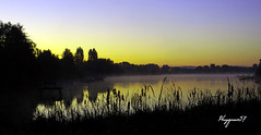 la frache ... (Phrygane57) Tags: tangdediffembach leverdesoleil brume eaux roseaux