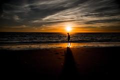 Black Ocean (PaxaMik) Tags: blackocean ocan ocean silhouette sun horizon soleilcouchant sunset ombre plage beach shadow t summertime summer