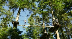The Spider Web (foilman) Tags: poppy ropes aerial adventure web