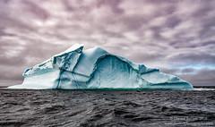 Floating Ice (Dwood Photography) Tags: floating ice floatingice dwoodphotography dwoodphotographycom 2016 newfoundland blue green atlantic ocean atlanticocean water vein iceberg