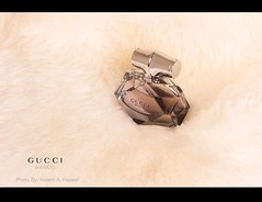 GUCCI BAMBOO (Hatem Haneef) Tags: alienbees bamboo gucci    hatemhaneef haneef hatem productphotography photography product studio 2470mm nikond3s nikkor nikon