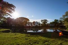 5D8_7395 (bandashing) Tags: water landscape village trees sun sunshine sunlight glare madarbazar balagonj sylhet manchester england bangladesh bandashing socialdocumentary aoa akhtarowaisahmed boat