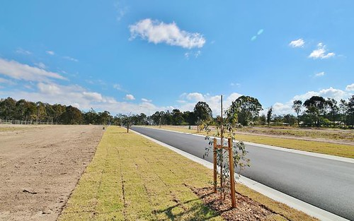 Lot 1018 Caladenia Crescent, Worrigee NSW 2540