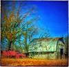 Memories of autumn... (Sherrianne100) Tags: redtruck ozarks missouri autumn rural oldtruck oldbarn
