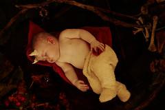 Deepest slumber (loulou_alexander) Tags: death rebirth inevitable natural birth life reaffirming darkest dark fairytale light miracle dad bones baby red riding hood wolf satyr horns fawn grimm