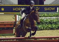Horse Show 2 (geowelch) Tags: cne royalwinterfair topwrwf16 torontophotowalks equestrian horseshow showjumping pentaxk5 pentax55300mm