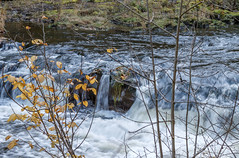 River Coquet, rapids, Northumberland (Beth Hartle Photographs2013) Tags: rivercoquet rapids autumn northumberland