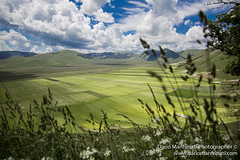 Landscape - Escape From the Land (Dario Manfrinati Photographer) Tags: nature naturephotography naturelover dariomanfrinatiphotographer castelluccio pianadicastelluccio italy italianpark landscape landscapephotography pointofview