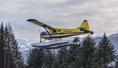 Alaska Seaplanes Bvr 3091 (Gillfoto) Tags: dehavilland beaver floatplane alaskaseaplanes
