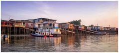 The Amazon Life (Rhannel Alaba) Tags: rhannel pido alaba samsung note4 munguba brazil local life