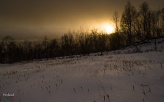 Sun (NerlandO) Tags: sun clouds snow shadow shiluette tree nature storm winter weather scenery hike norway d600 nikon