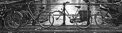 Panoramic bicycle (Lamevagaleria) Tags: bicycle vehculo bici blackwhite bw blancoynegro blackandwhite monocromtico amsterdam netherlands eindhoven canales river travel viaje viatge reportajedeviaje bicicleta holidays holiday panoramic panormica olympus e30