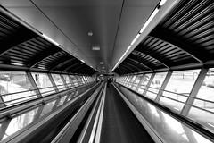 Barajas (stefanovillanova) Tags: travel viaggio viaggiare architecture viaje viaggi barajas aeroporto airport transport citt city nikon bw blackandwhite
