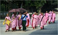 Myanmar. Moinesses en promenade à Mandalay. (leonhucorne) Tags: asie asia travel voyage tourisme myanmar birmanie madalay bonze moine moinesse