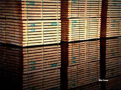 Mercadorias (verridrio) Tags: reflex reflexos sony cargo carga water wood madeira geometrico abstrato padro geometric rflexions reflexionen  reflexiones  riflessioni  yansmalar  746 minimalism flex ny