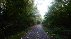 Rowntree Railway / Foss Island Branch   old railway  (York) (dave_attrill) Tags: york rowntree line foss island disused railway trackbed confectionery industry closed cycle path footpath sustrans national network goods 1895 1988 october 2016