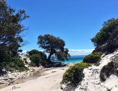Tasmania. Passage Beach. From the creek to the sea.