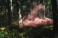smoke (hnrk hlndr) Tags: summer suomi finland smoke sysmä colouredsmoke petsamo