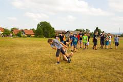 Holzoester-20150815-1028