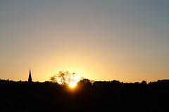 Goodnight Örgryte (xibalbax) Tags: sunset sky sun tree silhouette shadows