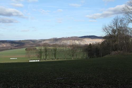 Waldroute