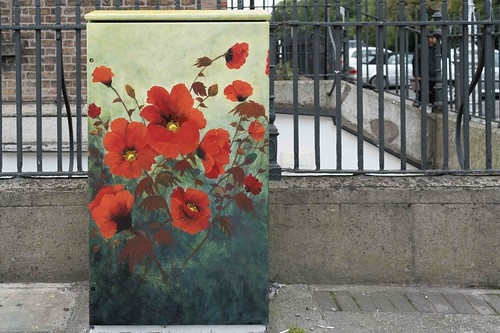 POPPY CORNER BY DONNA MC GEE [Fitzwilliam Street - Merrion Square South] REF-10805495