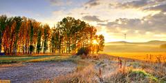 151012 083859·HD (easaphoto) Tags: autumn sun fall sol sunrise automne amanecer otoño autunno atun höst høst autunm ruduo jesień 秋天 hydref kuz jesen ősz herfs jeseň סתיו güz automme udazken خريف јесен ngahuru autuno پائیز осінь אָסיען შემოდგომა ฤดูใบไม้ร่วง vjeshtë mùathu diskaramzer hierscht fómhar otoñu hjest musimbuah намар աշուն otòn otunnu كۈز இலையுதிர்காலம் ఆకురాలుకాలం ಶರತ್ಕಾಲ हेमंत হেমন্ত rimü caratacu sfrunnata čakča ilharifa jȅsēn күз मेघांतः ukwindla ລຶດູໃບໄມ້ຫລົ່ນ көз શરદ ôtone тирамоҳ සරත්ඍතුව majirayapukutiko aracangî autorniu