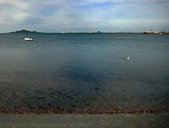 la manga del mar menor (maximorgana) Tags: sea sky seaweed building beach water island boat duck los horizon lamanga lamangadelmarmenor nietos isladelbaron