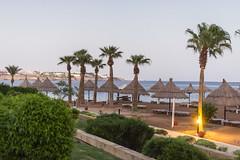 Danil Kolodin_Oriflame Egypt_high_DKL_7530