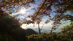 View from Mount Faito (cri land) Tags: wood alberi landscape island capri landscapes woods mount sorrento peninsula paesaggi paesaggio bosco faito boschi