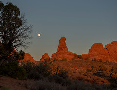 Moonrise Over Arches (judyhorton) Tags: moon nature landscape utah moonrise archesnationalpark lunar moonrising