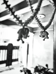 Hanging Elephant (kshitizz8) Tags: blackandwhite india elephant blur contrast thought halo chandelier