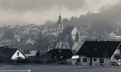 A misty November Morning in Dahenfeld. (andreasheinrich) Tags: november blackandwhite cold misty fog germany landscape deutschland moody dorf village nebel kalt landschaft badenwürttemberg blackandwhitephotos düster neckarsulm neblig schwarzweis nikond7000