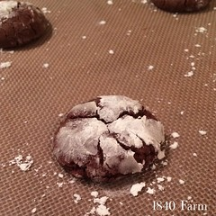 "I spent the evening in the farmhouse kitchen with our daughter baking Chocolate Crinkle Cookies. This is my idea of the perfect evening. You just can't top spending time with someone you love with chocolate cookies to boot!  http://1840farm.com/cookie-mem • <a style=""font-size:0.8em;"" href=""http://www.flickr.com/photos/54958436@N05/23642680005/"" target=""_blank"">View on Flickr</a>"