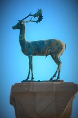 The Deer (rodiann) Tags: deer greece rhodes