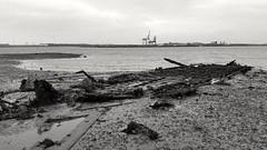 Shotley shipwreck #2. (Peter M Garwood) Tags: abandoned decay shipwreck shotleygate