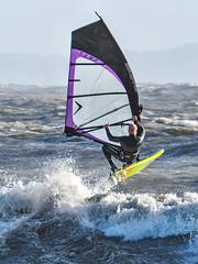 PC310625-Edit (Brian Wadie Photographer) Tags: gulls oystercatcher windsurfing kiting em1 goodlight 14xtc avonbeach canon70300lis hemgistburyhead