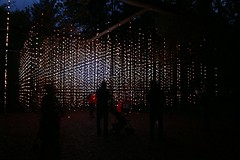 2016 - 14.10.16 Enchanted Forest - Pitlochry (32) (marie137) Tags: enchanted forest pitlochry mobrie137 scotland lights music people water reflection trees shows food fire drink pit patter shapes art abstract night sky tour family walk path bells smoke disco balls unusual whisperer bridge wood colour fun sculpture day amazing spectacular must see landscape faskally shimmer town