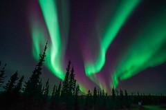 Northern Lights - Arctic Circle - Alaska (Mike Beauchamp) Tags: northernlights auroraborealis alaska daltonhighway arcticcircle night nightsky aurora