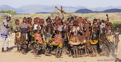 Group of Hamar women dance during bull jumping ceremony. (Panda Sam) Tags: africa african black bracelet bull ceremony culture dance dancer dancing decoration dimeka ethiopia ethiopian ethnic exotic girl goscha greasy group hair hairstyle hamar hamer initiation jump jumping leather lower native necklace ochre omo people ritual skirt strand tradition traditional tree tress tribal tribe turmi valley village wedding welt woman young