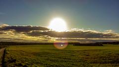 Big Beautiful Sun (MoonDog (Life is Beautiful)) Tags: sunset field light sun clouds cloudy england uk countryside walk beautiful relaxing landscape